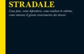MANUALE DELL'INCIDENTE STRADALE